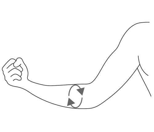 Risultati immagini per circonferenza avambraccio