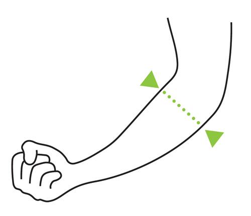 circonferenza avambraccio misurata sotto il gomito